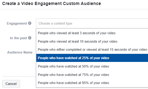 Facebook Custom Audience Video Engagement
